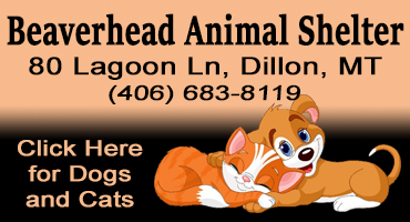 Humane Society of Beaverhead County